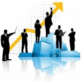 Technology Integrators as Profit Centers